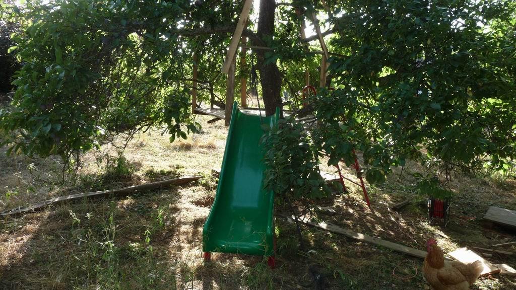 Construire Une Cabane Dans Les Arbres Pour La Joie Des Enfants
