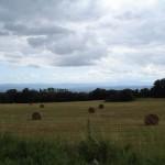 Pays cathare - vue sur les Pyrénées