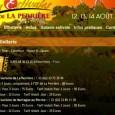 Et voilà un petit dernier festival dans notre territoire du Perche, les 12, 13, 14 aout 2011, cela se passe au petit village de «La Perrière» dans L'Orne. Pour une...