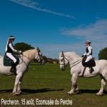 Fête du cheval Percheron à l'écomusée du Perche le jeudi 15 août 2013